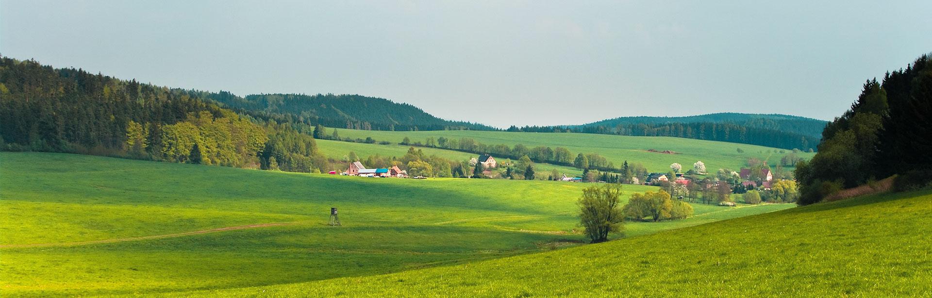 Vytvárajme spolu zelené oázy na miestach, kde žijeme