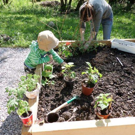 Komunitná záhradka